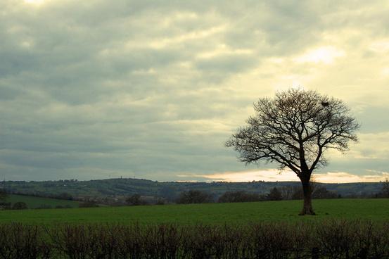English_landscape_515465